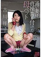 近親相姦肏翻貞操帶寵物媽媽 古川祥子