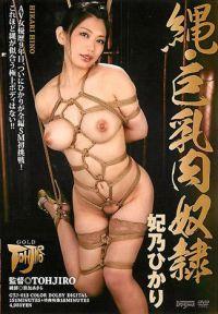 繩・巨乳肉奴隷 妃乃光
