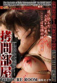 拷問部屋 TORTURE ROOM 藤咲セイラ